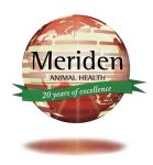 thumb_Meriden_GlobalSuccess_20th_website